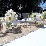 Summer Beach Theme Table Decorations