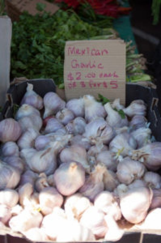 Mexican Garlic at the Cleveland Markets, Brisbane QLD Australia 20150802-VPR00313.jpg