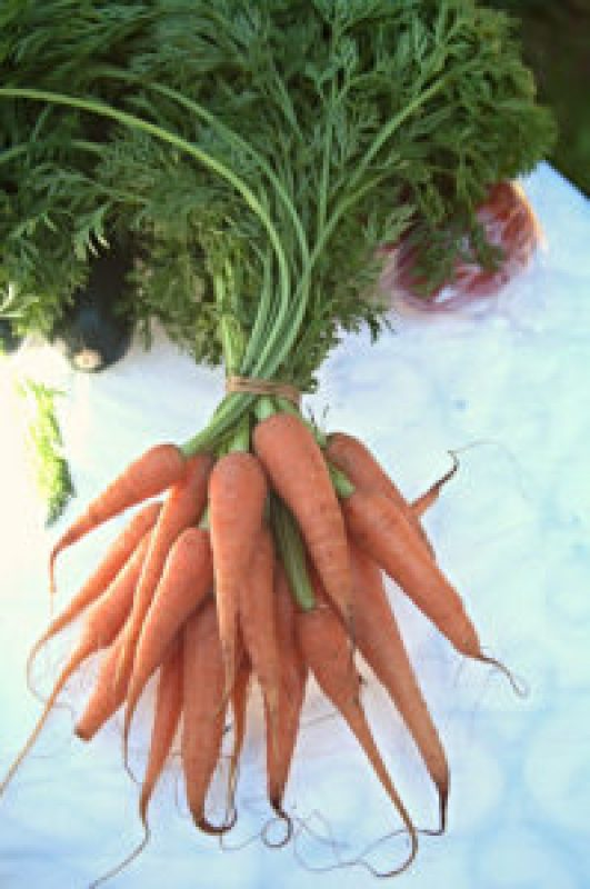 Baby carrots at the Cleveland Markets, Brisbane SE Australia