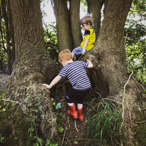 Susie Robbins gives ideas for growing resilience through play (picture of kids climbing tree)