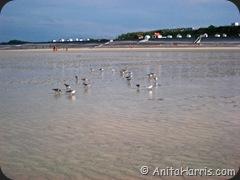 Low Tide at St Aubin