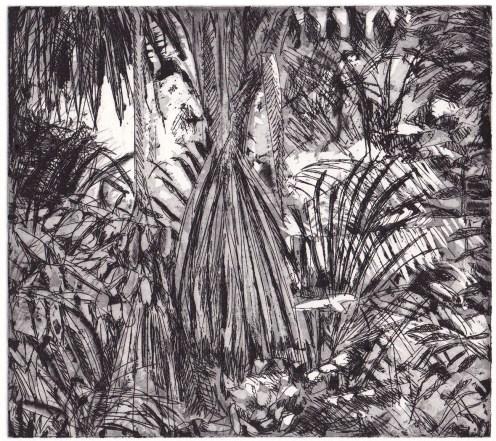 Forêt amazonienne 2 – 2016 Aquatine, eau-forte au trait 16,5 X 14,7