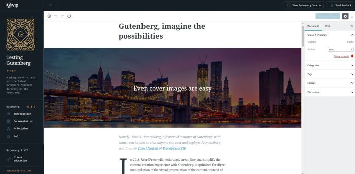 The Ultimate WordPress Gutenberg Guide | AnitaM