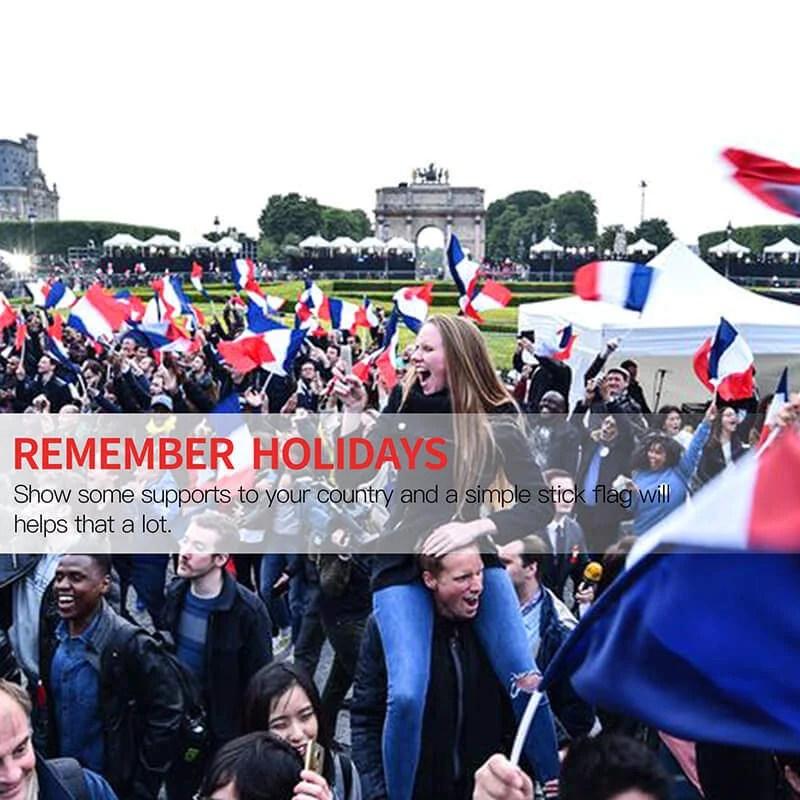 France Stick flag