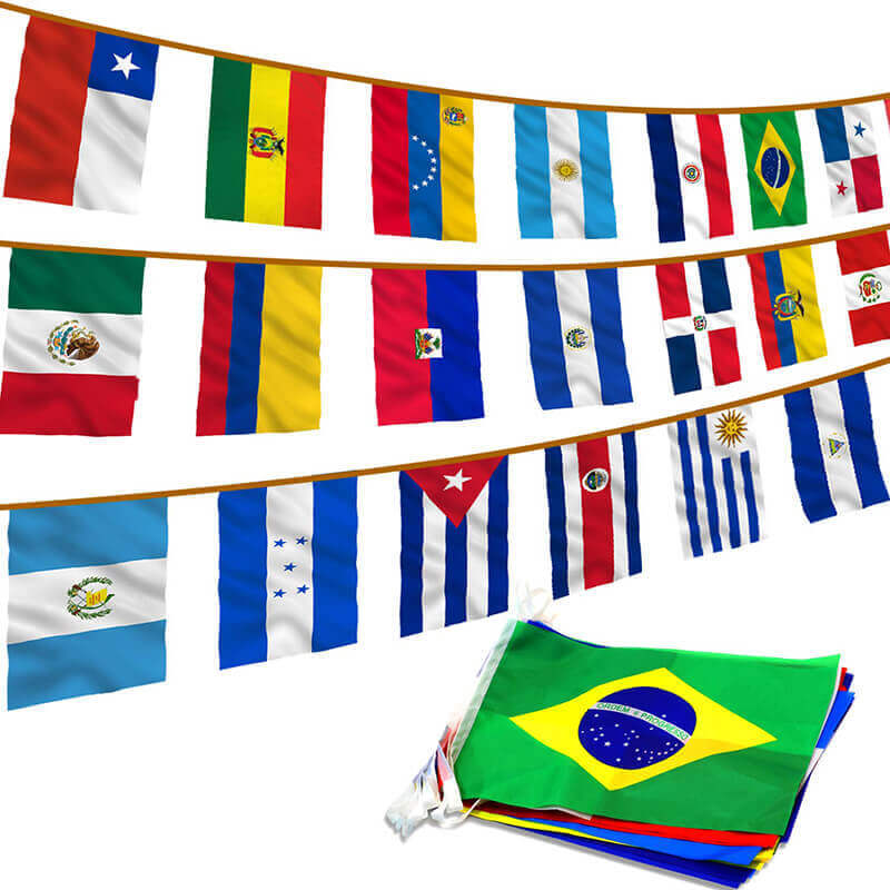 America Whole Pic Latin Flags