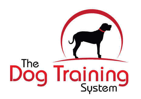 Dogtrainersystem