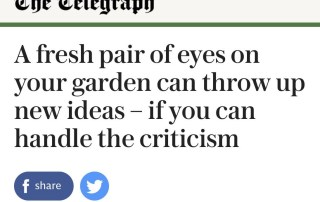 Garden designer Ann-Marie Powell's garden advice for Telegraph Journalist