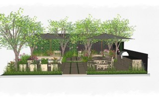 Hampshire based Ann-Marie Powell Gardens to design for Gaze Burvill at RHS Chelsea 2021