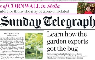 Sunday Telegraph gateway Plants with Ann-Marie Powell