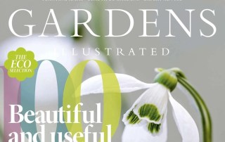 Gardens illustrated Design Trends 2021