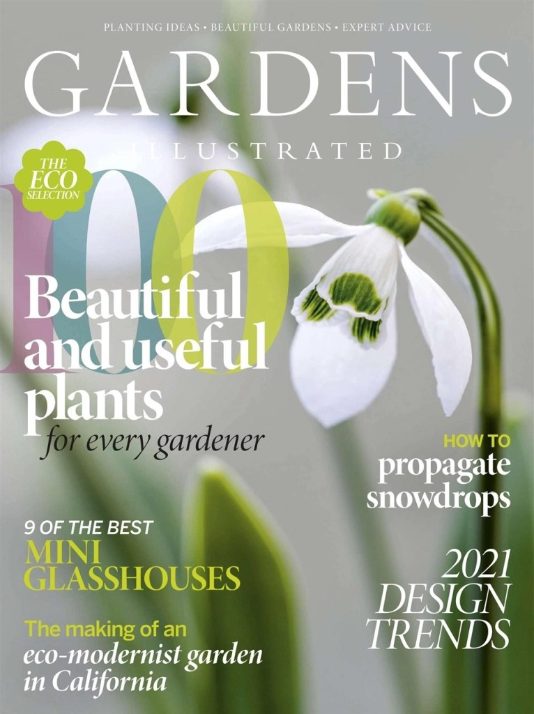 Gardens Illustrated Design Cover Trends 2021 Designer Ann-Marie Powell