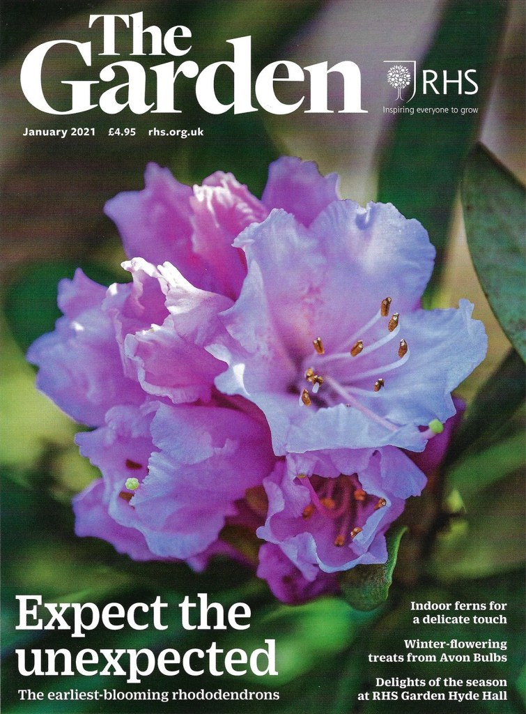 New world food Garden designed by Ann-Marie Powell in The Garden Magazine January 2021