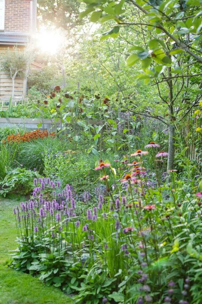 Designer Ann-Marie Powell's garden in Petersfield, Hampshire