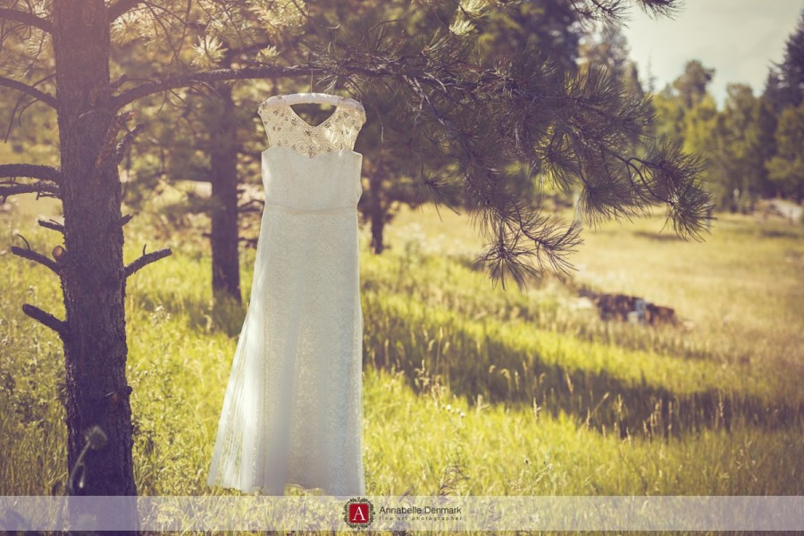Maya's beautiful wedding dress hanging from a pine tree