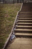 Steps_ 5