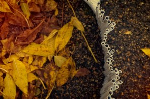 pavement crack rods 24