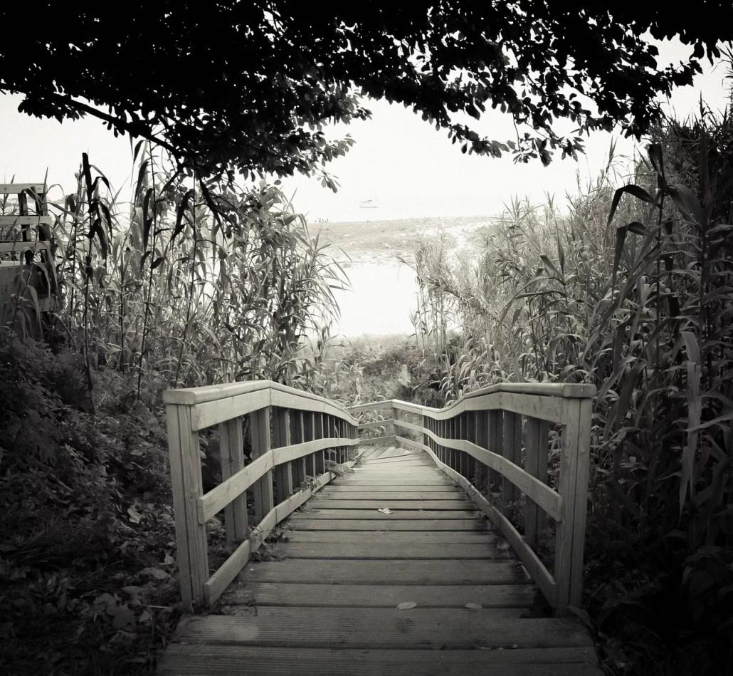 puente en blanco y negro - camino consciente