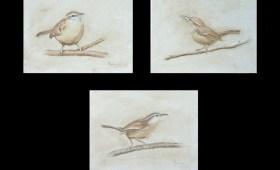 Wren Triptych