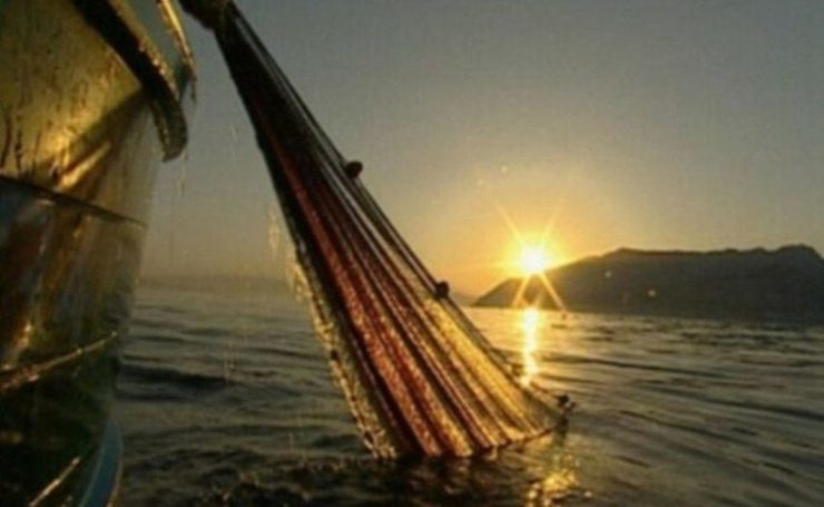 prendi il largo e calate le reti per la pesca