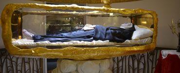Beata Madre Teresa Fasce