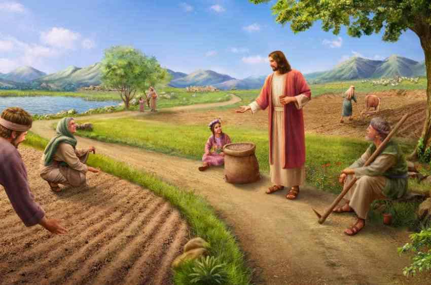 Signore accetta i nostri piccoli sforzi
