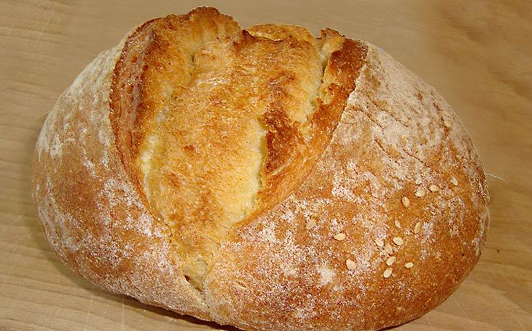Gesù è il pane vivo