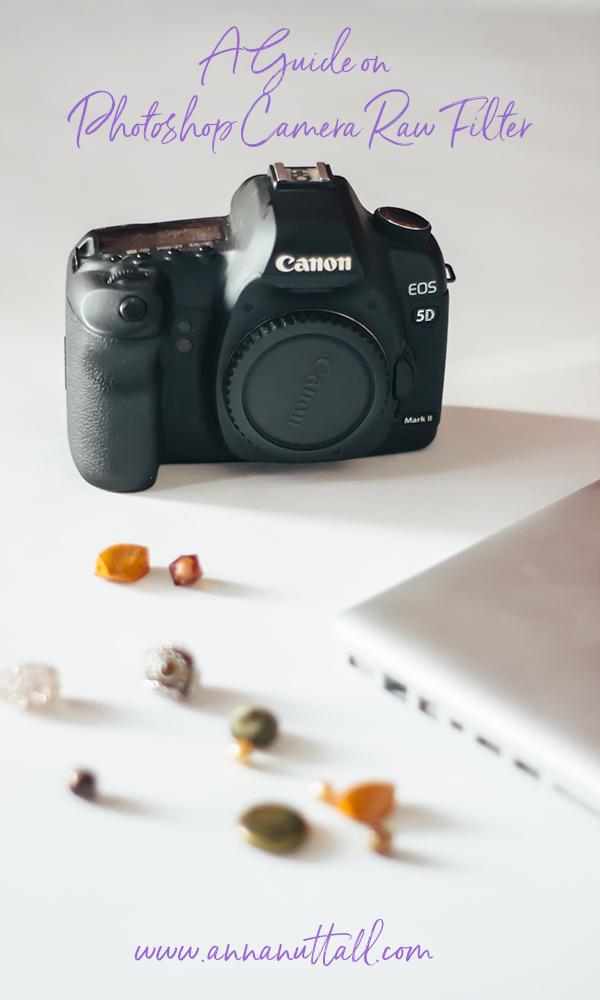 Photoshop Camera Raw Filter