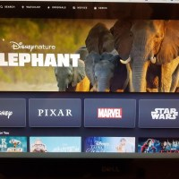 5 Reasons Why To Subscribe To Disney+