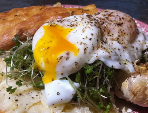 Borden - poached egg on toast