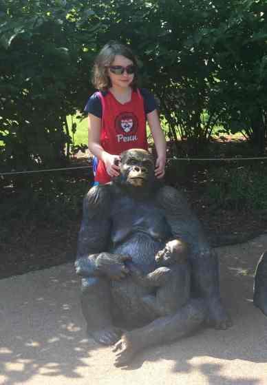 Toledo Zoo Gorilla Statue 2015