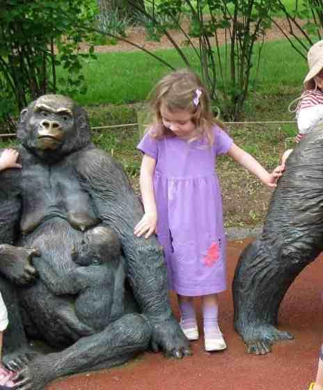 Toledo Zoo #TBT Gorilla Statue 2009