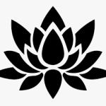 lotus transparent