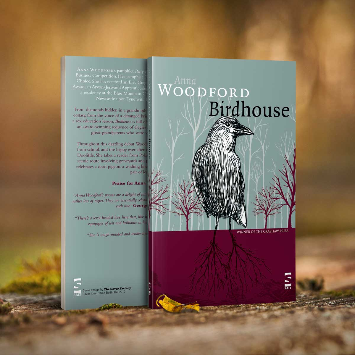 Book cover for Birdhouse by Anna Woodford