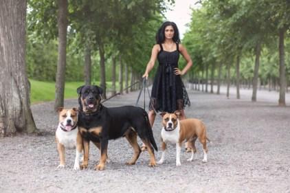 Dogs-pet portrait -Ann Charlotte Photography@2016-8