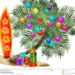 palm xmas tree