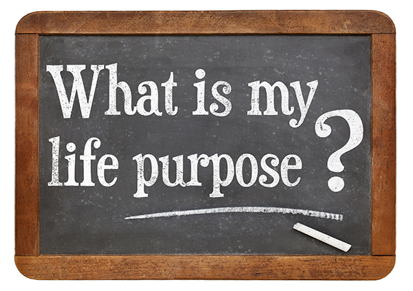 Image result for discover your purpose