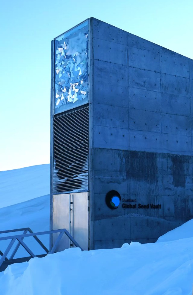 The building of the global seed vault in spitsbergen