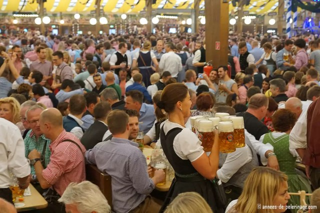 A waitress carrying a heavy load of beer mugs in a beer tent of oktoberfest