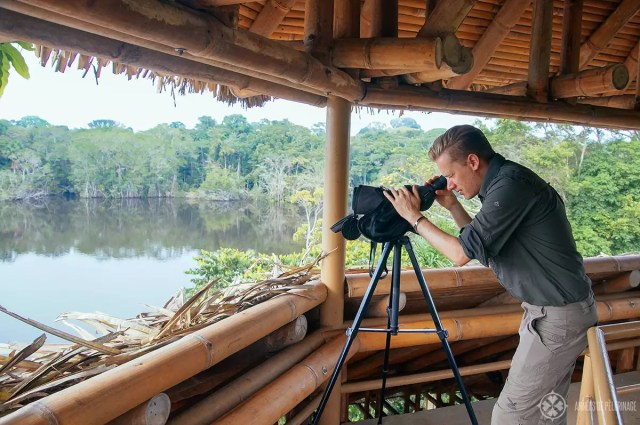 Birding in the amazon rainforest in Ecuador