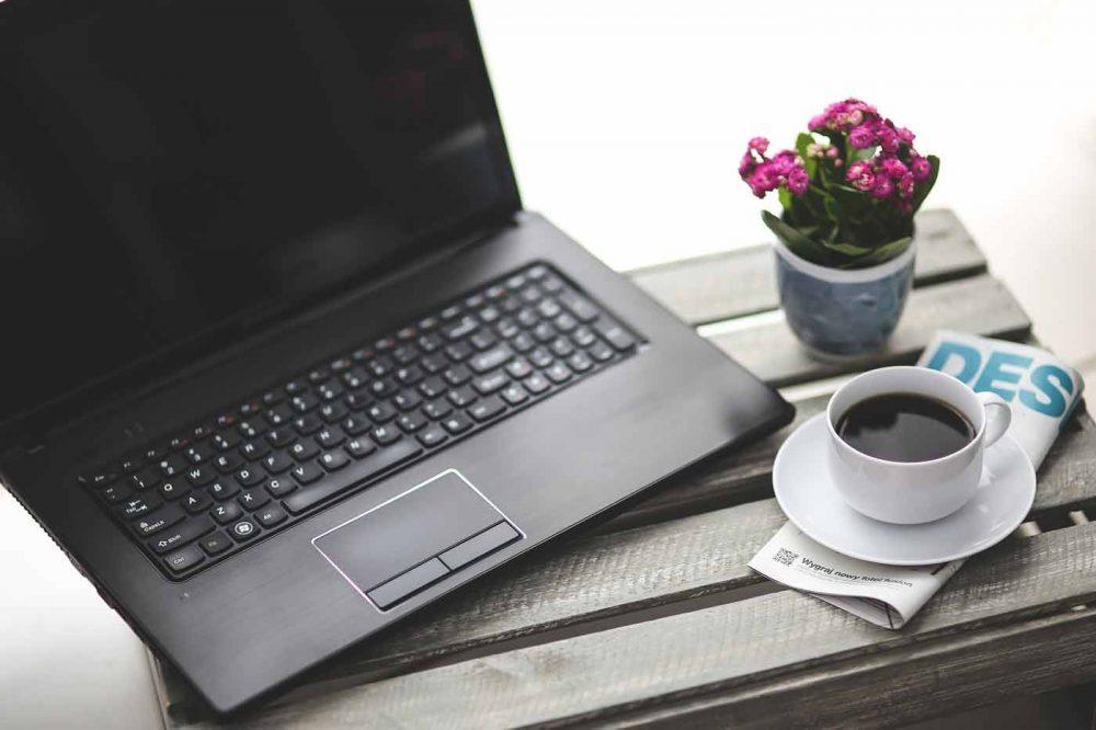 hagekunnskap og bloggerene