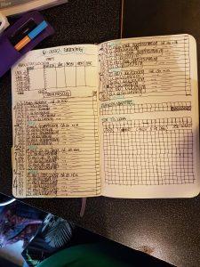 6-ukers plan i bujo