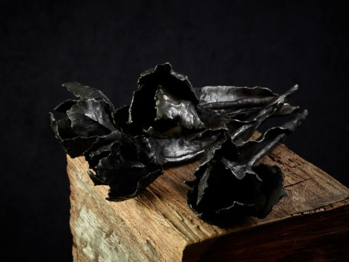 Tulip black patinated