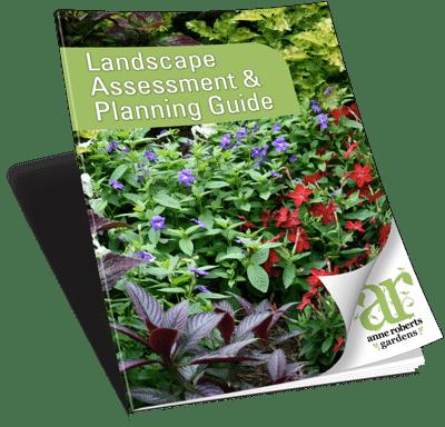 Anne Roberts Gardens ARG-PlanningAssesment-web