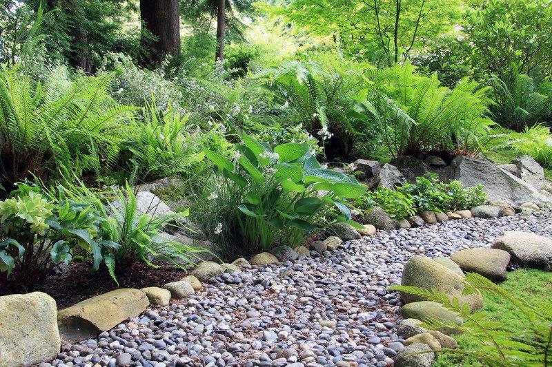 Anne Roberts Gardens Chicago-landscaping-10