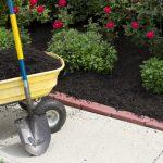 Anne Roberts Gardens chicago-landscaping-mulch-150x150