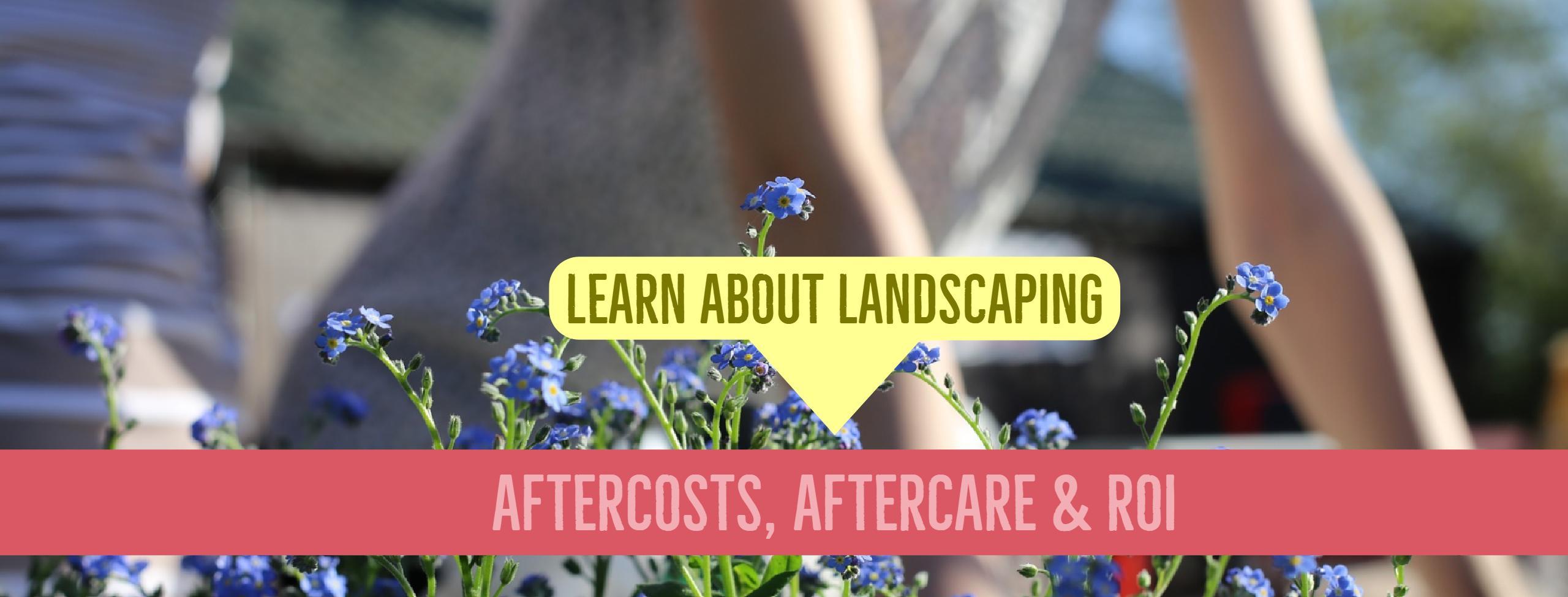 Anne Roberts Gardens hire-a-landscaper-3