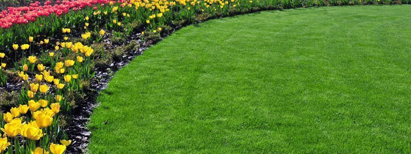Anne Roberts Gardens premier-landscaping-tip