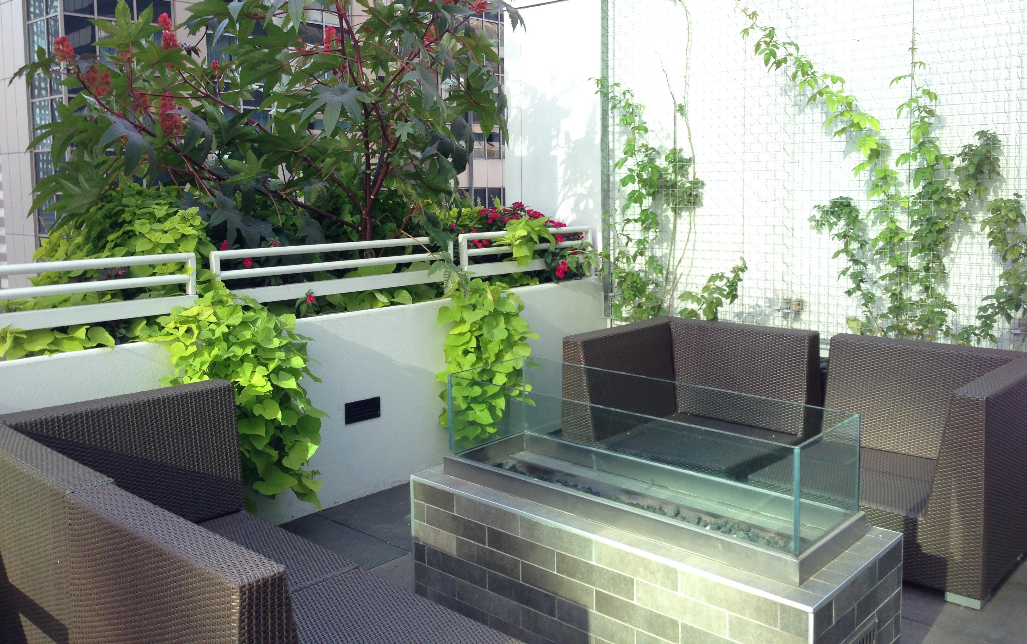 Anne Roberts Gardens rooftop-gardens-2-2