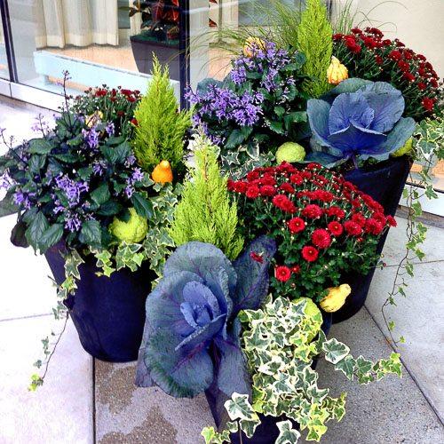 Anne Roberts Gardens seasonal-rotations-5