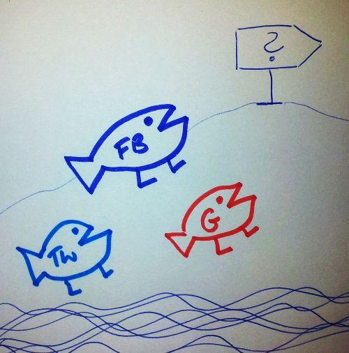 Fische mit Füßen kommen ans Land und wandern in ungewisse Zukunft
